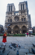 Feeding the birds at Notre Dame
