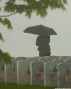 Memorial Day at the National Cemetery in MI