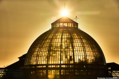 Center dome of the The Anna Scripps Whitcomb Conservatory during Sunrise